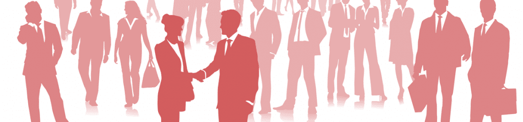 Formulaire de candidature - Chargé(e) d'affaires
